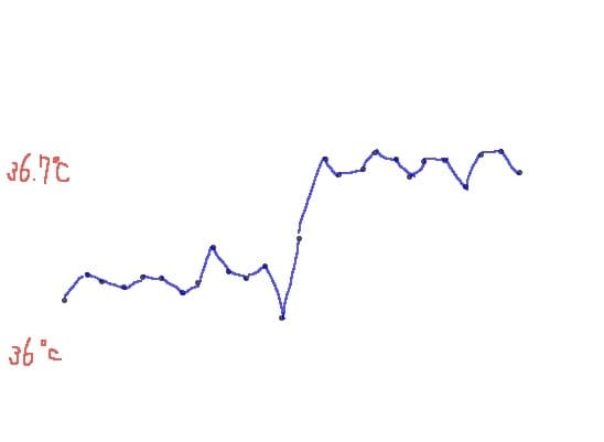 基礎体温表に記入2